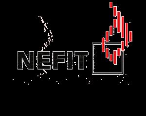 logo-nefit-trans1-300x240